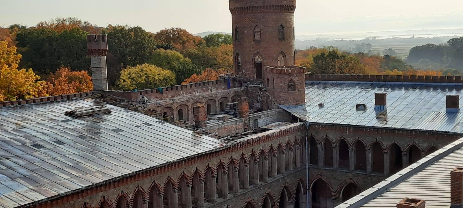 Pałac Marianny Orańskiej z nowym dachem - Zdjęcie główne