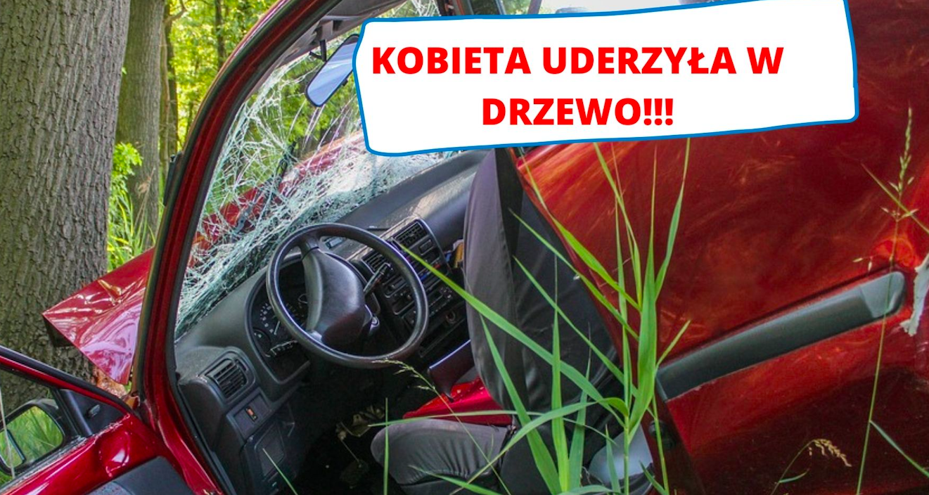 Gmina Ziębice: kobieta uderzyła w drzewo  - Zdjęcie główne