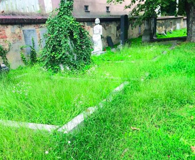 Ząbkowice Śl. Wyremontują cmentarz na 1 Maja - Zdjęcie główne
