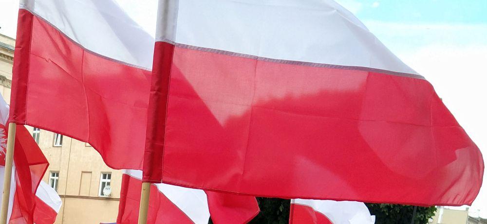 Skromne obchody Narodowego Święta Niepodległości - Zdjęcie główne