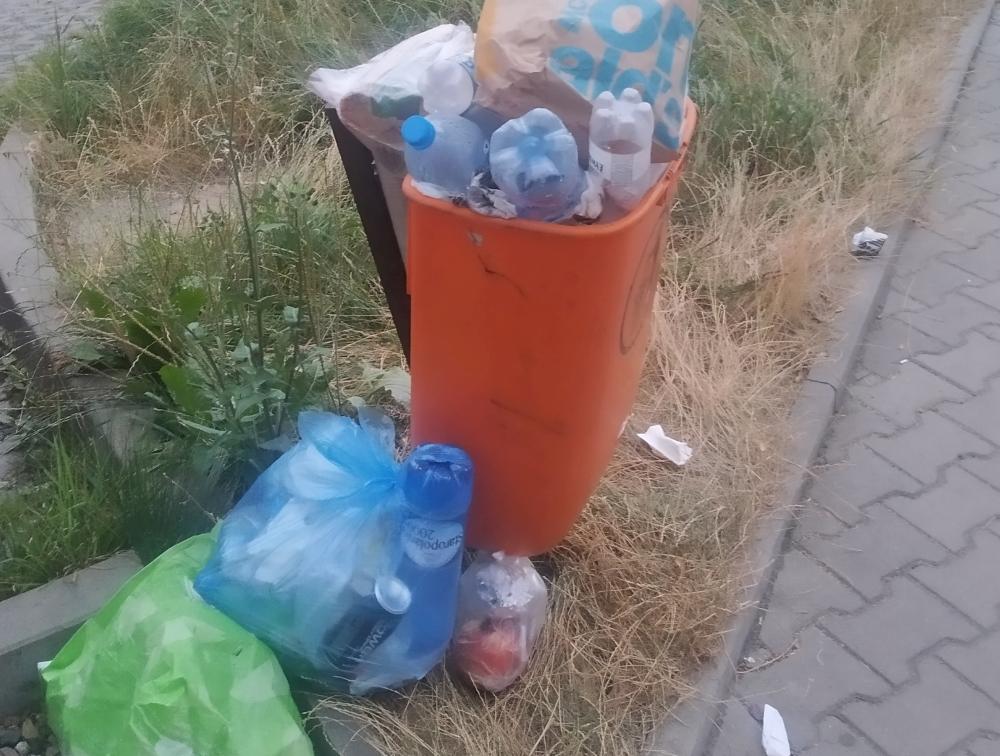 Nie płacą za śmieci, śmiecą gdzie popadnie! - Zdjęcie główne