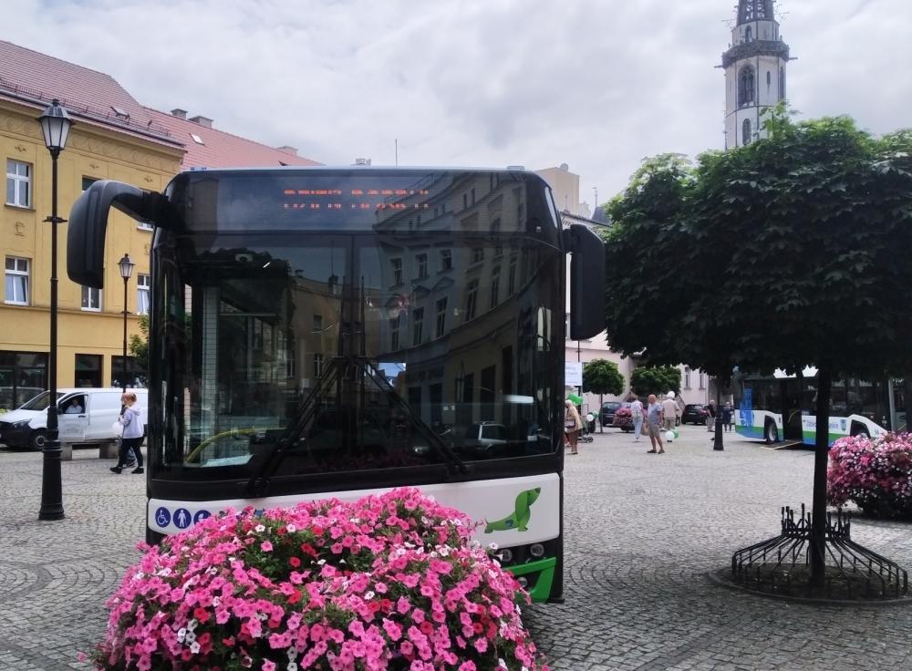 Jak jeżdżą ząbkowickie autobusy? Sprawdź w ZOK-u - Zdjęcie główne