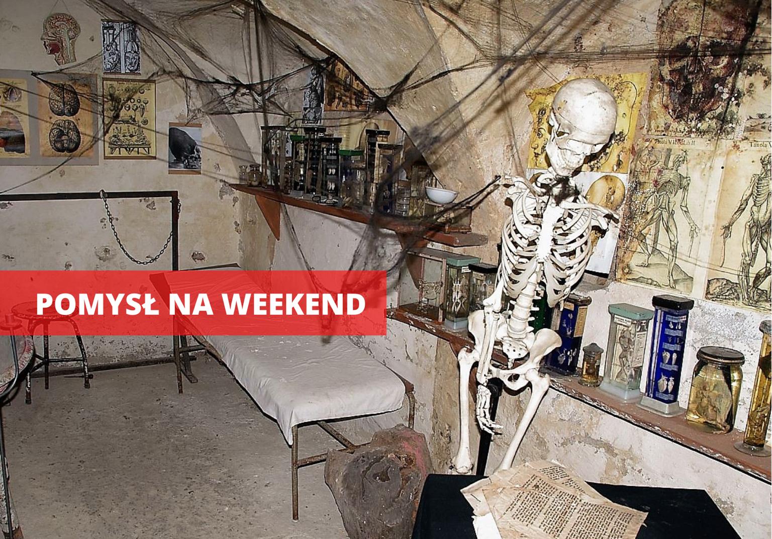 Ząbkowice Śląskie: Frankenstein - prawdziwa historia - Zdjęcie główne